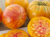 Big-Rainbow Big Rainbow is our favorite yellow striped tomato. Sweet - Juicy tomatoes on healthy & productive plants