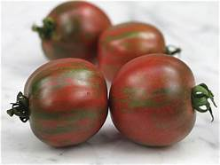 Black Vernissage is a saladette tomato with a rich tomato flavor. It is one of the first plants to produce for us and the healthy plants produce all season long!