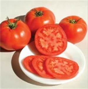 The 10-12 oz. medium-large, globe-shaped, bright red fruits are rather soft but meaty with plenty of old-fashioned tomato flavor. One of our earliest varieties.